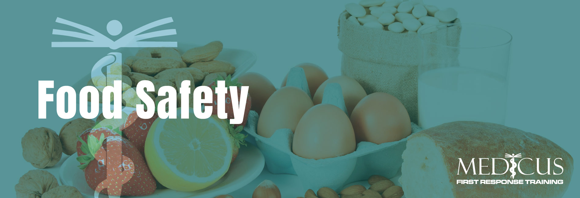 Medicus-Training-Carmarthen-Services-Food-Safety